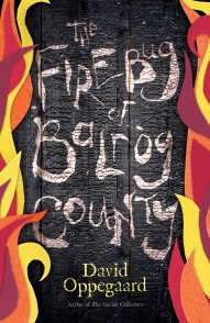Firebug of Balrog County final final