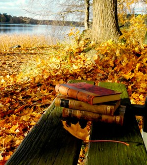 weird-books-fall-reading-300x336